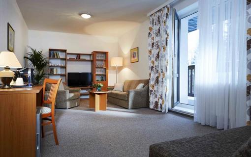 Spa Hotel Děvín 1151635623