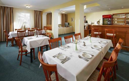 Spa Hotel Děvín 1151635639