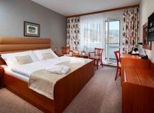 Spa Hotel Děvín 1151635613