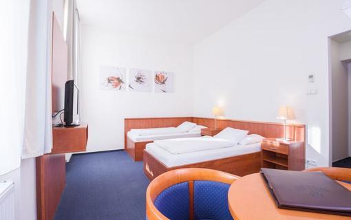 Hotel LEV Lovosice 1154288195