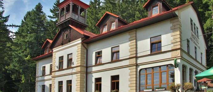 Hotel Pod šikmou věží Holín 1133429235