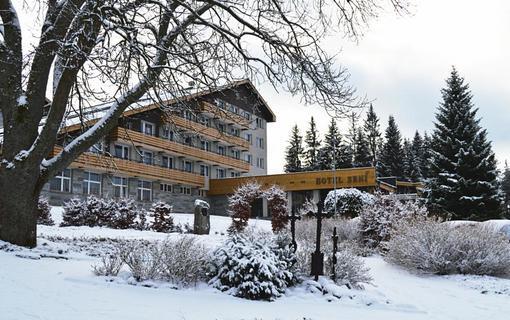 Hotel Srní a depandance Šumava 1154290583
