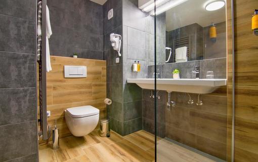 Hotel Srní a depandance Šumava 1154290567