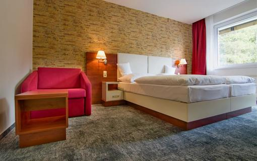 Hotel Srní a depandance Šumava 1154290559