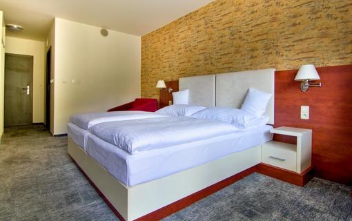 Hotel Srní a depandance Šumava 1154290561