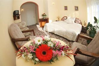 Hotel Anton Praha 49606588
