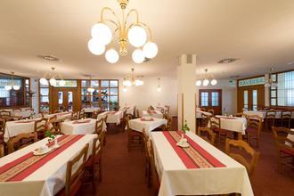 Hotel Svratka 44245056