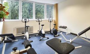 Wellness Hotel Svornost 1154076195