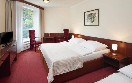 Wellness Hotel Svornost 1154076031