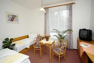 Lázeňský hotel Jirásek Konstantinovy Lázně 50857394