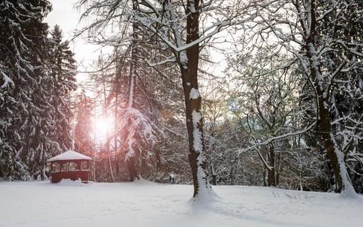 Vánoční wellness pobyt-Lázeňský dům Mánes 1156795027