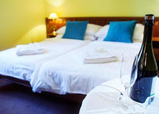 Hotel-Villa-Ostrava-3+-4