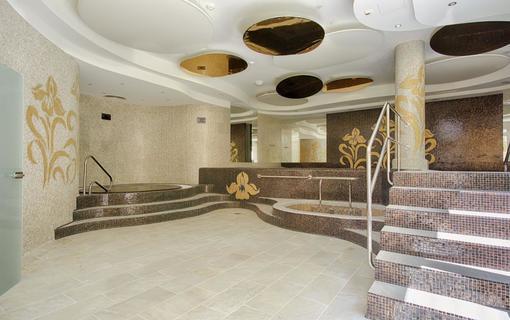 Spa Hotel IRIS 1152591407