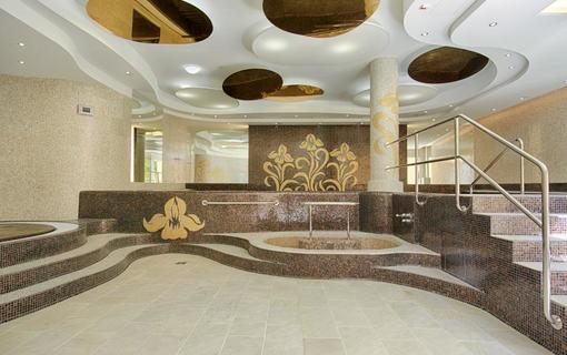 Spa Hotel IRIS 1152591403