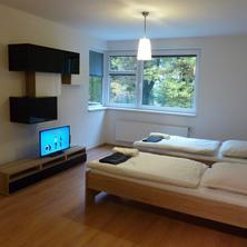 Apartmán Březinky