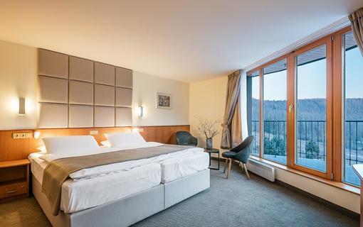 Hotel Ostrov Dvoulůžkový pokoj Deluxe