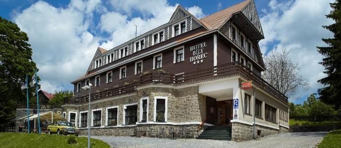 Spa Hotel Bílý Hořec Harrachov