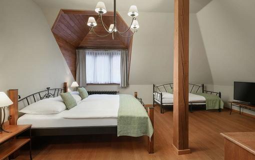 Resort Sobotín - Wellness & Spa Hotel Sidonie 1152241079