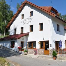 Penzion Šalupa Horní Planá 50492698