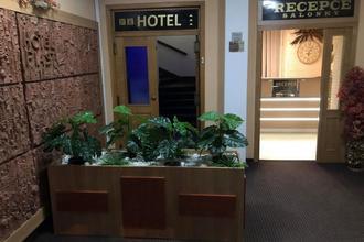 Hotel Piast Český Těšín 1113692306