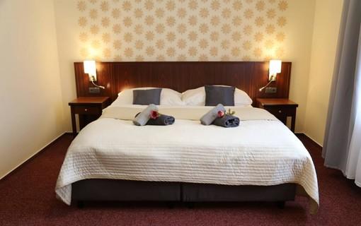 Malý léčebný pobyt na 2 noci- WELLNESS HOTEL VILLA GROHMANN 1141624173