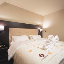 HOTEL VICTORY Brno 41784252