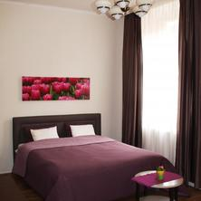Apartments Tulip's Lake Horní Planá 35480914