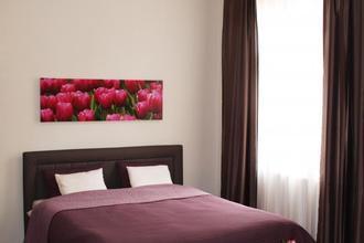 Apartments Tulip's Lake Horní Planá 46229182