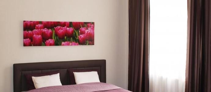 Apartments Tulip's Lake Horní Planá 1135474283