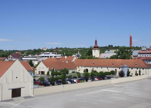 Dobrovická-muzea,-o.p.s.-1