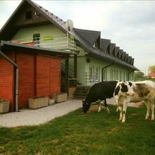 Ubytování Na Hřišti Leština 34885818