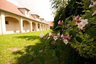 Ubytování Malovaný dvůr Dolní Dunajovice 35974494