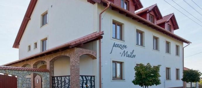 Penzion Mušlov Mikulov 1120039120