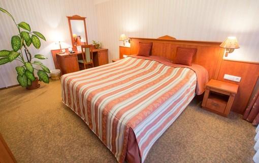 Relaxační pobyt na 5 nocí-Hotel Krále Matěje 1150763815