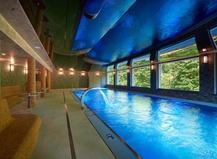 Wellness hotel Green Paradise 1155785797