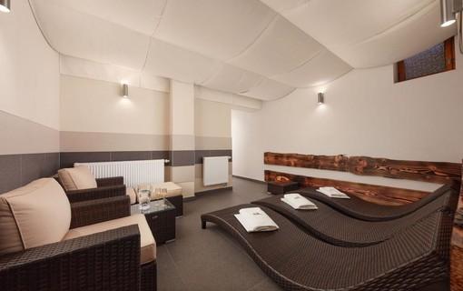 Horský wellness pobyt-ProFamily Hotel TOP 1155585931