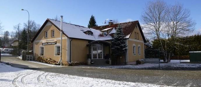 Penzion Malé Lipno Černá v Pošumaví 1135600331