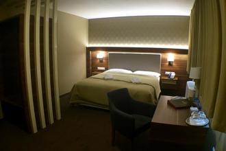 Hotel Hron Nová Baňa 1110874538