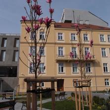 Centrum Salvator Bratislava