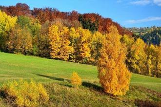 Špindlerův Mlýn-pobyt-Barevný podzim na 2 noci ve všední dny