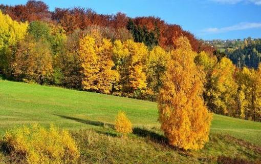 Barevný podzim na 2 noci ve všední dny-Hotel Lenka 1156555363