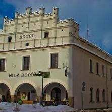 Hotel Bílý Koníček Třeboň 39658904