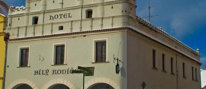 Hotel Bílý Koníček Třeboň 42565642