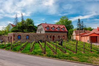 Vinařství Lintner Tvořihráz