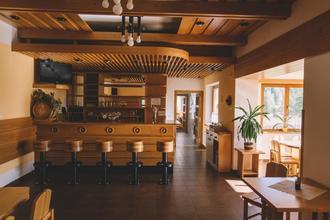 Hotel Vydra Srní 46965744
