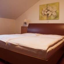 Hotel Magistr Vsetín 42458982