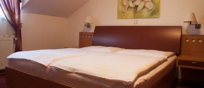 Hotel Magistr Vsetín 49170726