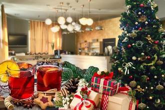 Klidné vánoční svátky-Hotel DaVinci