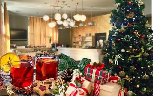 Klidné vánoční svátky-Hotel DaVinci 1156071125