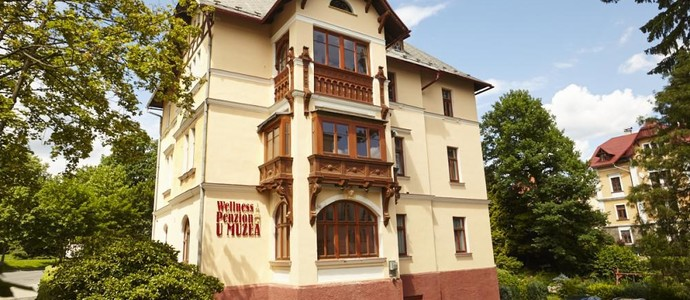 Wellness Apartmány U Muzea Liberec